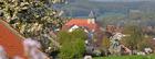 Lokale Empfehlung Integrationslotsen Dissen e. V.
