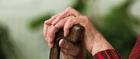 Lokale Empfehlung Caritas Sozialwerk St. Elisabeth