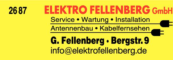 Anzeige Elektro Fellenberg GmbH Gerhard Elektro