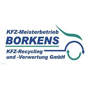 Bild von KFZ-Meisterbetrieb Borkens KFZ-Recycling und -Verwertung GmbH