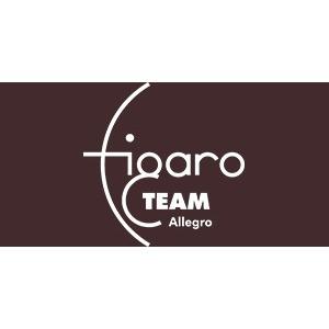 Bild von FIGARO TEAM Allegro