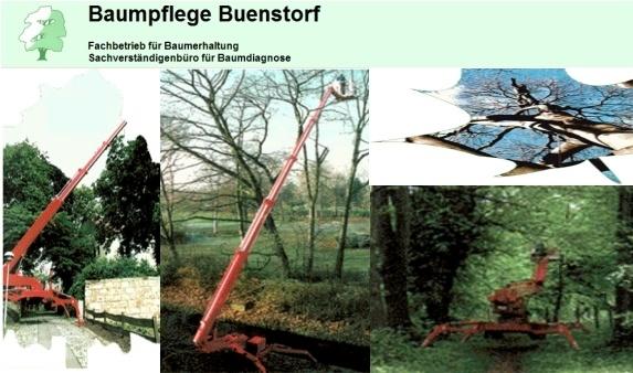 Baumpflege Buenstorf Inh. Walter Buenstorf