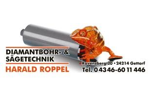 Bild zu Diamantbohr- Sägetechnik Harald Roppel e. K. in Gettorf