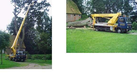 Gartenbau Henstedt Ulzburg gartenbau bargfeld stegen gute adressen öffnungszeiten