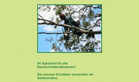Baumpflege Burckhardt