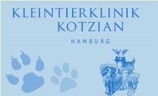 Kotzian