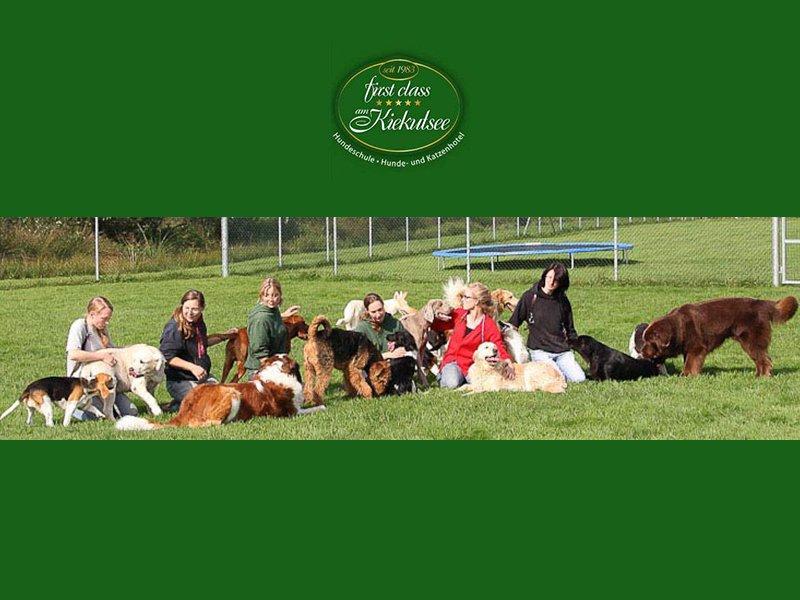 Hundeschule & Hunde- und Katzenhotel FIRST CLASS am Kiekutsee R. Lütjohann