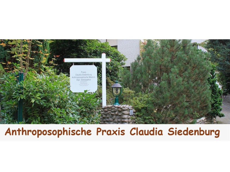 Anthroposophische Praxis