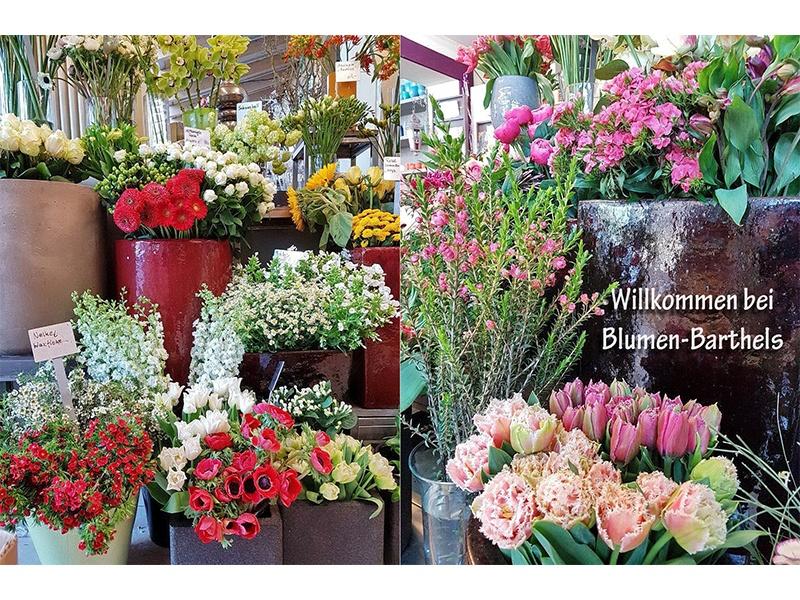 Blumen Barthels GbR