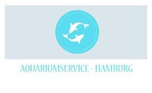 Aquariumservice Hamburg Holger Krogh Aquariumservice