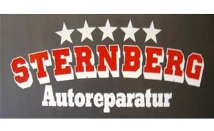 Bild zu Sternberg Autoreparatur e.K. Inh. Denis Kleinhans Reparaturservice in Hamburg
