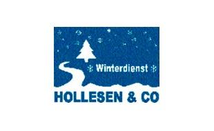 Bild zu Hollesen & Co. Grundstückspflege GmbH Reinigung in Hamburg