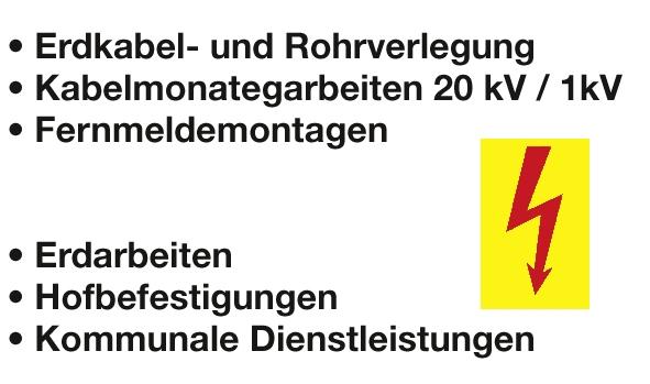Alms Elektro- und Anlagenbau GmbH