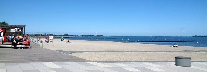 Hansestadt Stralsund Der Oberbürgermeister