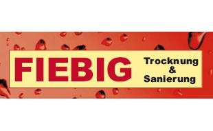 Fiebig GmbH & Co. KG