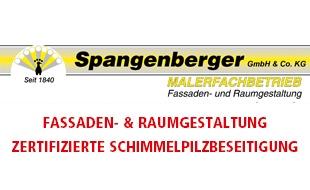 Bild zu Malerfachbetrieb Spangenberger GmbH in Duisburg