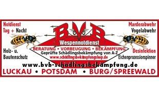 Bild zu BVB - Schädlingsbekämpfung von A-Z Potsdam-Luckau-Burg(Spreewald) Holz- u. Bautenschutz Notdienst Tag & Nacht in Potsdam
